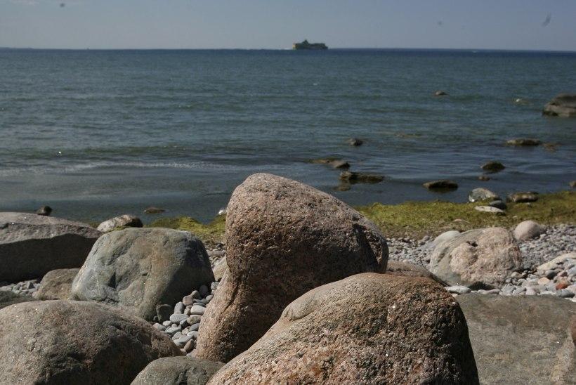 USKUMATU: Õhtulehe piknikukorv on 12 aastaga ainult 1,26 euro võrra kallinenud + 4 säästlikku retsepti