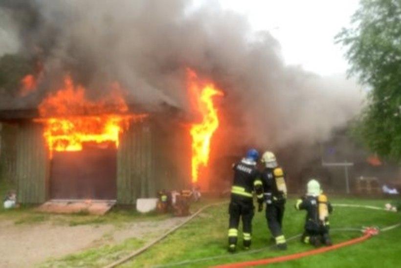 VIDEO | Välgutabamus: Reinar Halliku kodu hävis tules