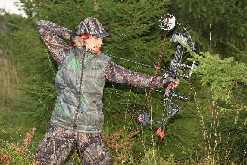 NOOLTERAV VAIDLUS: kas vibuga küttimine paneks metskitsed asjatult valudes piinlema?