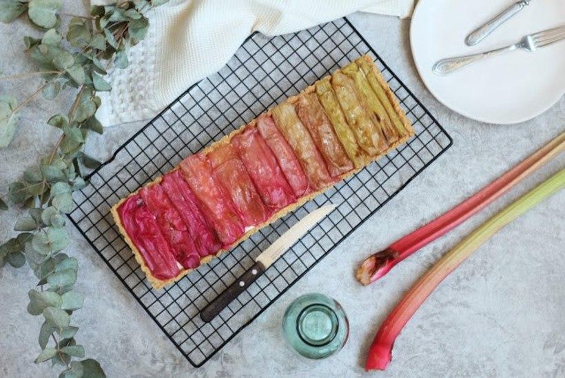 SELLE HOOAJA VIIMANE: vikerkaarevärviline rabarberikook
