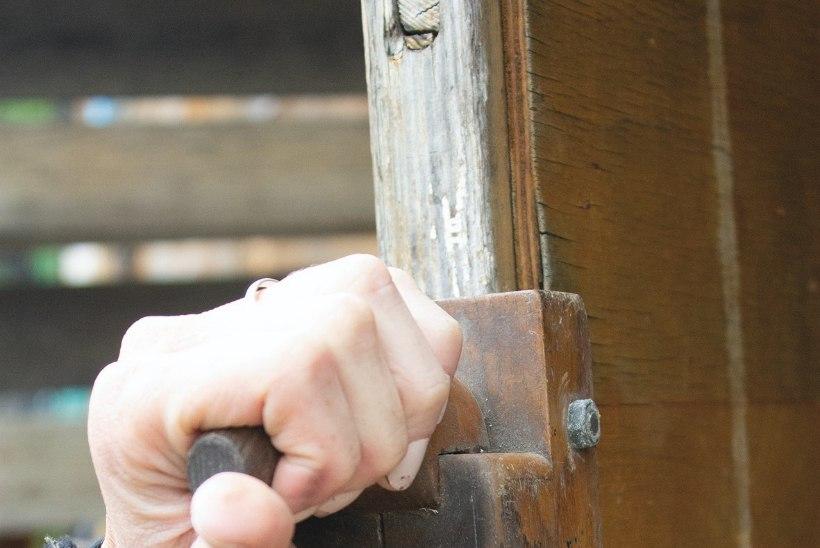 4 sammu, mille abil kääksuv puituks taas esinduslikuks muuta