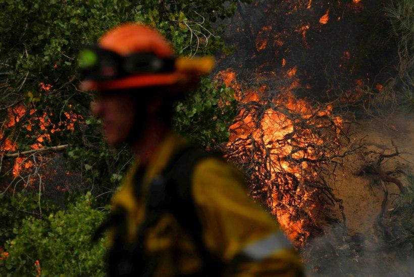 ILMATAADI RAEV: erakordne äikesetorm vallandas Californias metsapõlengud