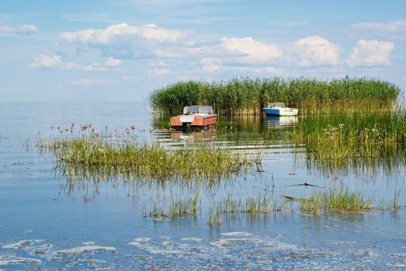 Peipsi – imede järv