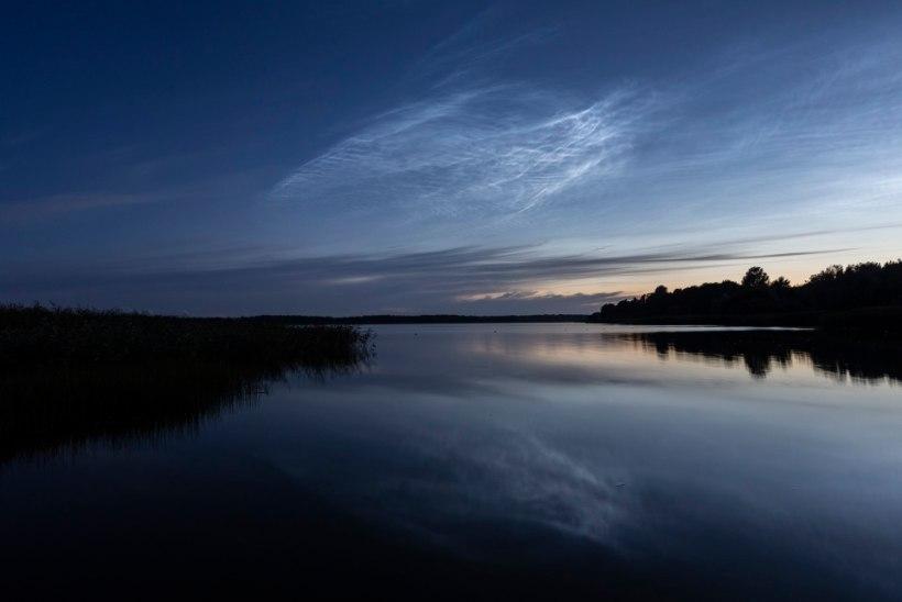 Helkivad ööpilved: tähtedestki eredamad külalised suveöises taevas