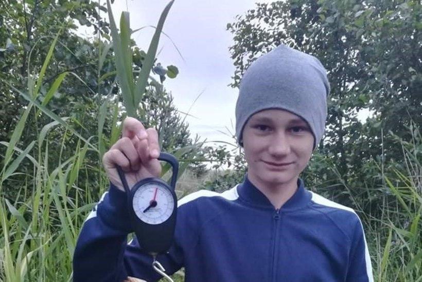 Aasta rekordkala konkurss: soliidne hõbekoger Hiiumaalt