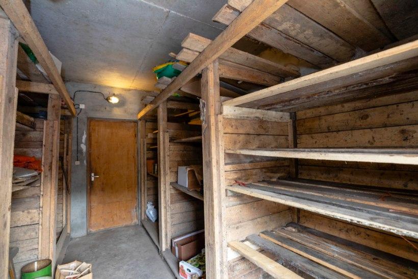 FOTOLUGU | Kaunis koduaed, kus põlvest põlve on kasvatatud daaliaid
