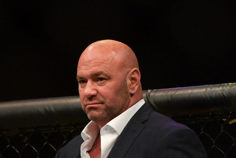 UFC president poksimise suurnime naasmisest: kokaiin ei ole ju odav