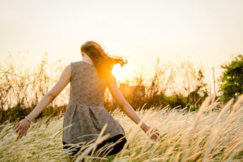 KODUKONTOR AJAB PAKSUKS! 9 nippi, kuidas panna piir pidevale näksimisele