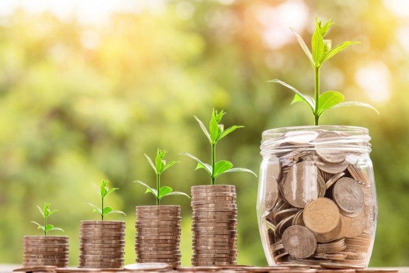 Väikeinvestor Liisi Kirch annab nõu: kuidas alustada investeerimisega?