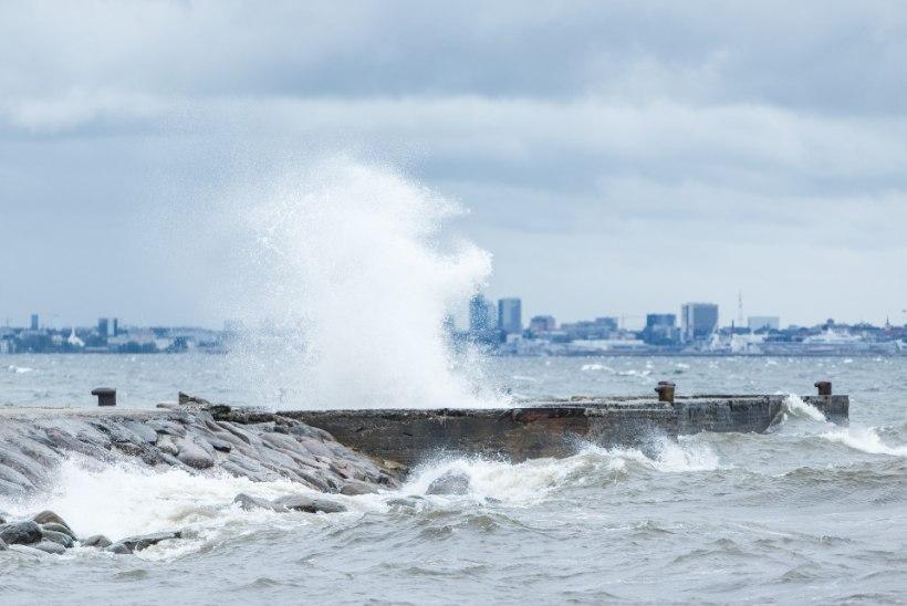 ILMAPROGNOOS | Esimese taseme hoiatus: Eestit räsivad nädala lõpus tormised tuuleiilid
