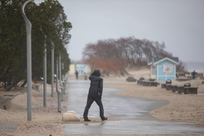 TORMIBLOGI   Neljapäeval möllas külm tuul. Enamik majapidamisi on reedeks elektrivoolu tagasi saanud