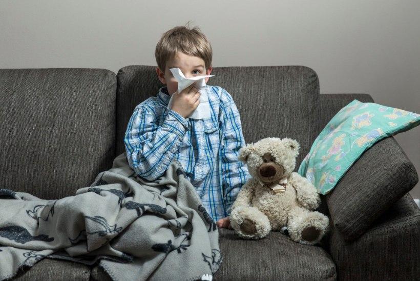 IGA KORD UUS TÕEND? Astmaatikud ja allergikud peavad koolis köha-nohu päritolu tõendama hakkama