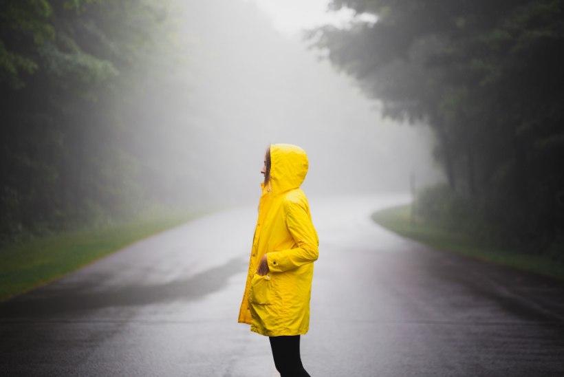 VIHMARÕIVASTE ABC: millega kaitsta end saju ja tuule eest?