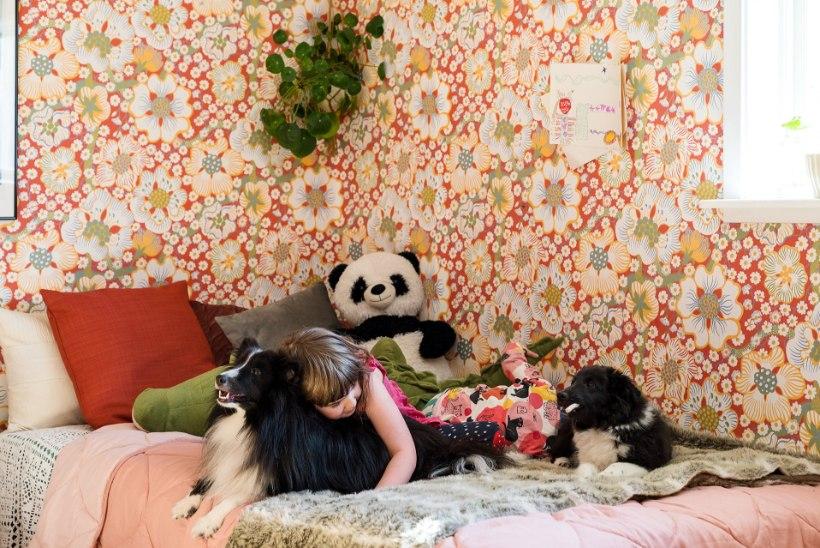 FOTOLUGU | Skandinaavialikult maagiline mustrimäng vanaisa majakeses