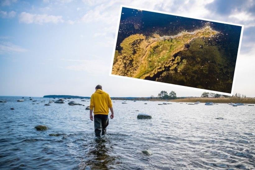 ÕL VIDEO JA FOTOD | Hea elu! Räppar Nublu ostis isikliku saare