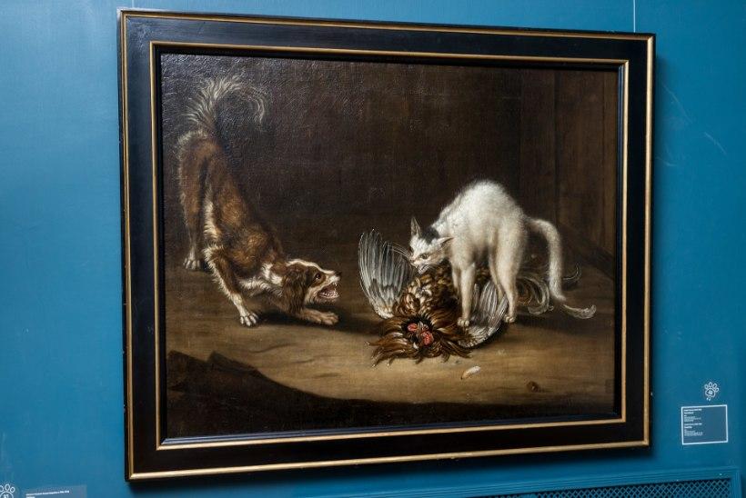 """KASSID-KOERAD KUNSTIS: """"18. sajandi keskel hakkavad kassid juba koertest jagu saama."""""""