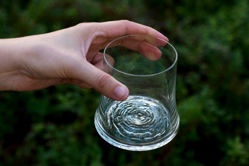 Bruno disainiauhind: silmapaistvad disainesemed viskiklaasist ökotapeedini