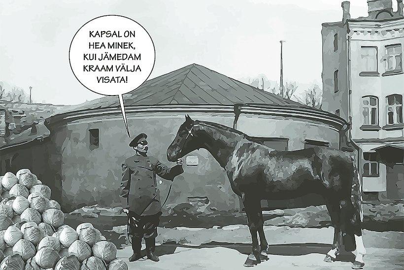 Rahvajutte: viimane hobutöö Tallinna hobuveskis