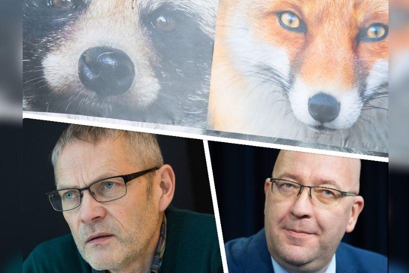 MANIPULATSIOON?! Maaeluministeerium õigustas karusloomafarmide säilitamist loomaaia direktori Tiit Marani nimega