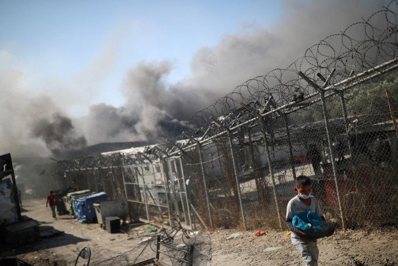 KOLETU HUMANITAARKATASTROOF: Euroopa suurim pagulaslaager põles maha