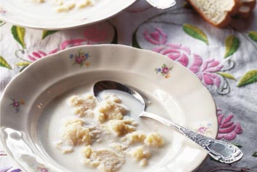 HEAD PIIMAPÄEVA! 7 maitsvat piimasuppi, mis tuletavad lapsepõlve meelde