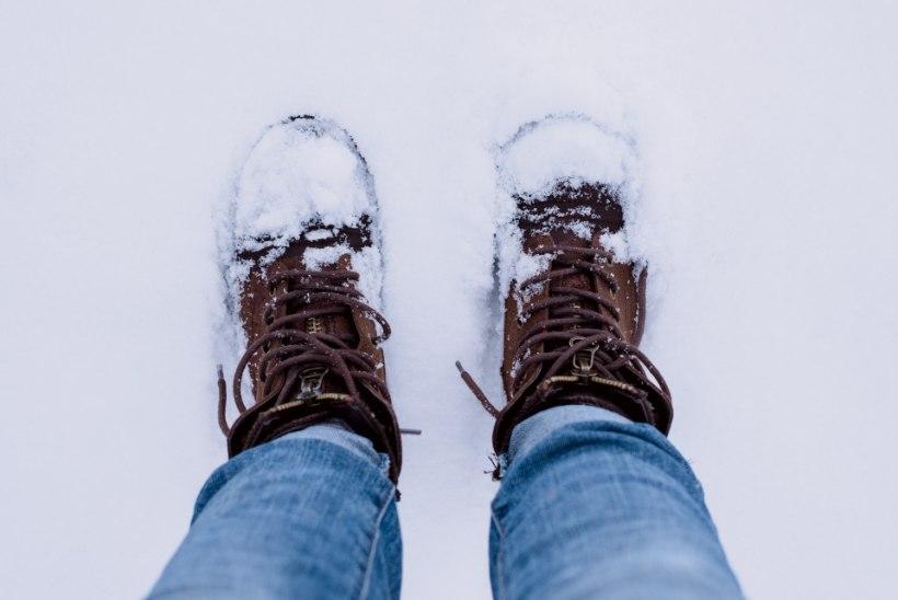 Hoia tali õues ehk Väärt nipid, kuidas lumi saabastega tuppa ei pääse