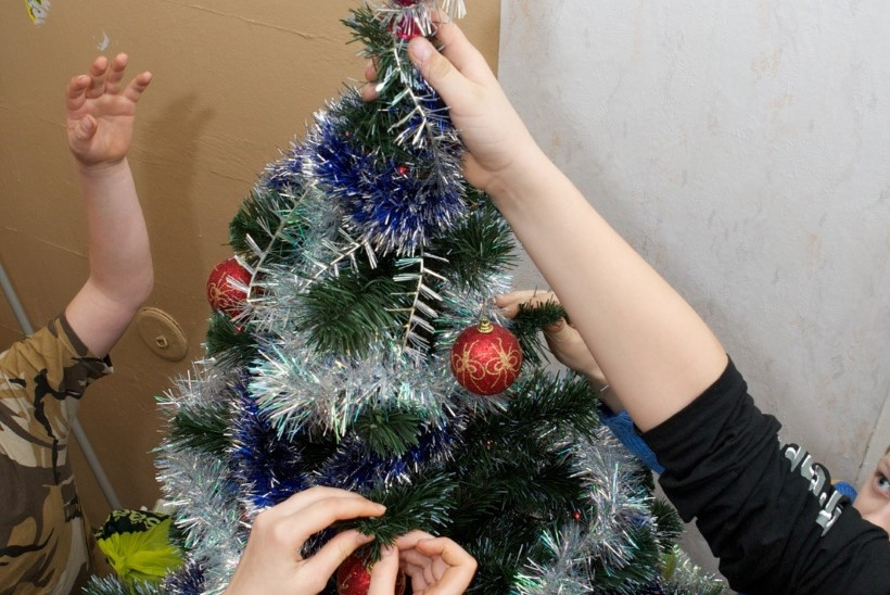 Lugejakiri | Eksperiment: kas kuusk peab vastu järgmiste jõuludeni?