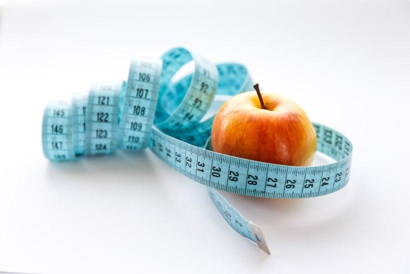 Lugejakiri | Solvang või tõsiasi: laps ütles, et ma olen paks