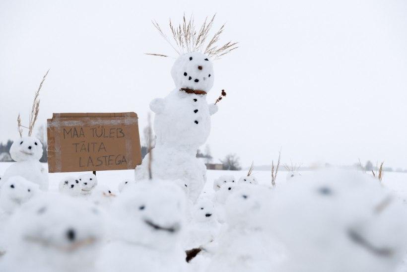 UHKE PARAAD | Väätsal saavad homme kokku lumememmemeistrid ja fantaasiarikkad lahendused