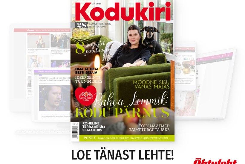 VEEBRUARI KODUKIRI | Uus ajakiri on ilmunud!