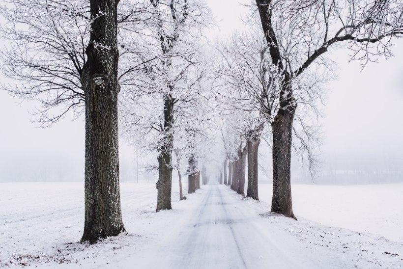 Müüdid ja tegelikkus: võitlus libeduse ja lumega
