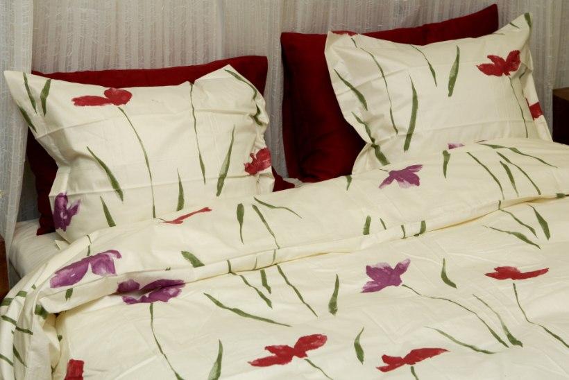 Lugejakiri   Puhtusefriigist mees kasutab voodis kutsikatele mõeldud linasid