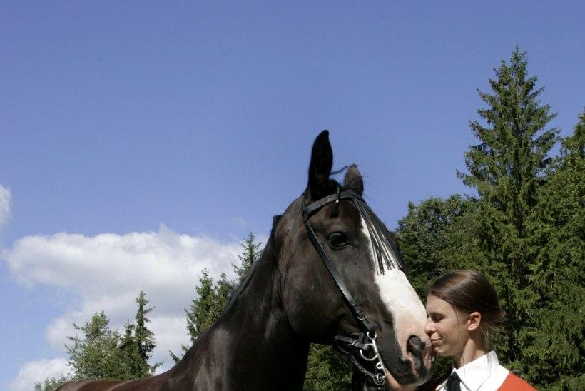 """Eesti kultuuripärand on hukule määratud? 20 aastat vana-tori hobuseid aretanud sakslanna: """"Mul ei ole enam positiivset perspektiivi pakkuda."""""""