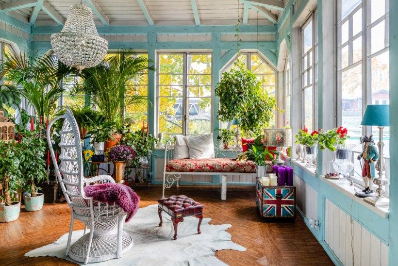 FOTOLUGU   Kahe mehe troopilise armastuse kodu uperpallitab vikerkaarevärvides