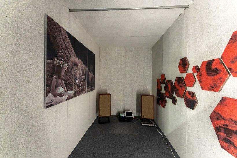 PÜSI KURSIL   Sisustusmess näitas helisummutavaid seinapaneele, seisulaudu ja munasaunu