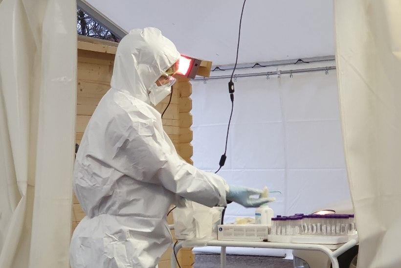 Koroonaviirusega on haiglaravil 205 patsienti, ööpäevaga lisandus 815 uut nakatunut