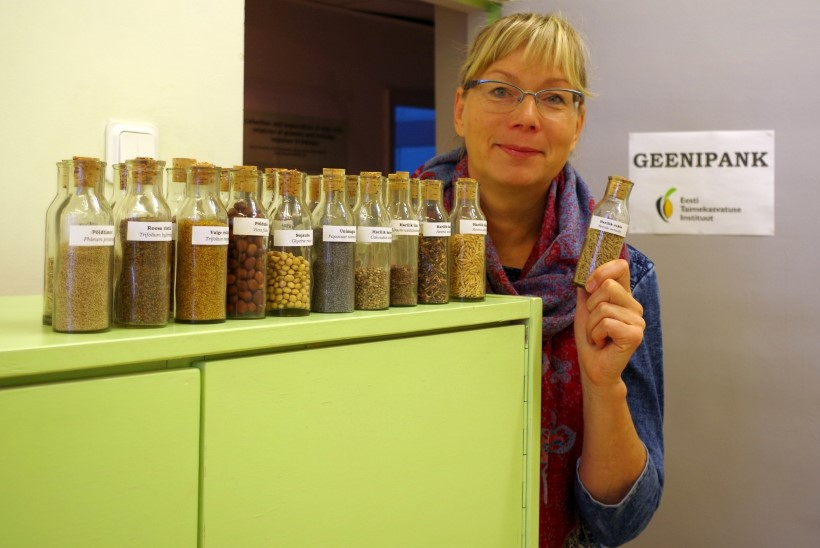 Seemnete geenipank: põliste taimede seemneid on oluline säilitada ka sul!