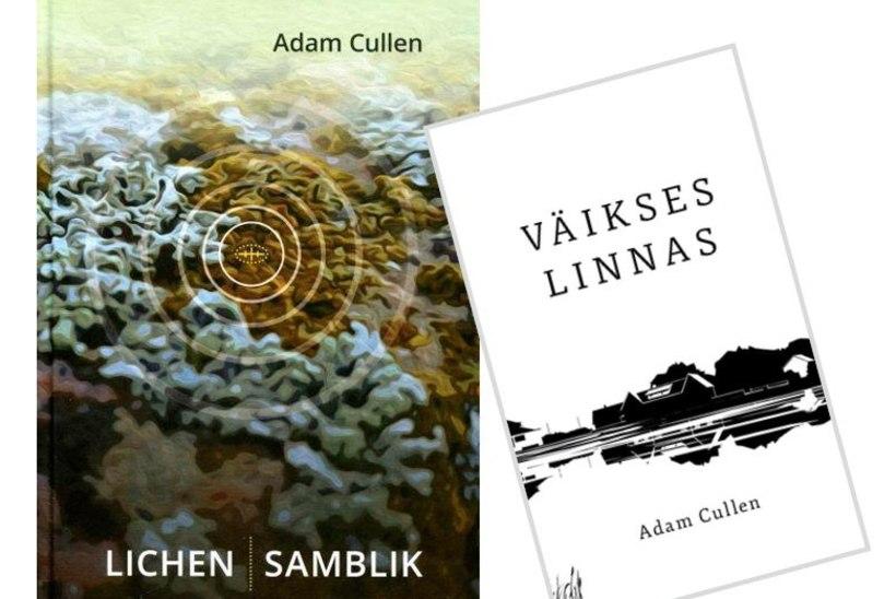 Ameeriklane Adam Cullen, norrakas Øyvind Rangøy ja soomlane Ville Hytönen: välismaa kirjanikud, kes armusid eesti keelde