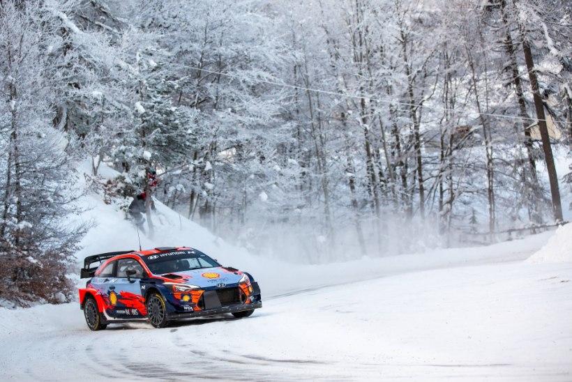 Selgus Arctic Rally osalejate nimekiri, stardis neli Eesti sõitjat