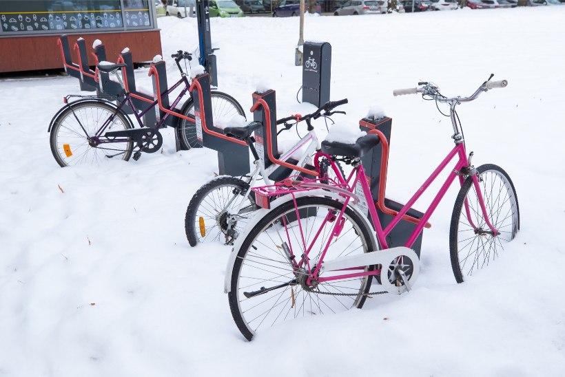 FOTOD | Rõõmu lumest: Pallase tudengid, ohvitserid ja osav kopajuht ehitavad Tartule lumelinna