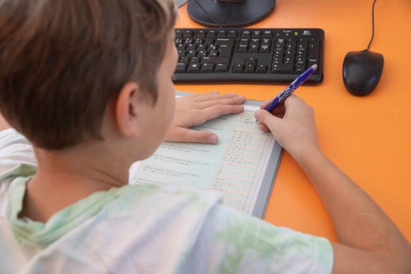 KADUNUD LAPSED: mitusada Eesti last ei käi kunagi koolis