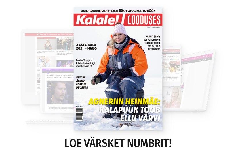 Ajakirja veebruarinumber on ilmunud!