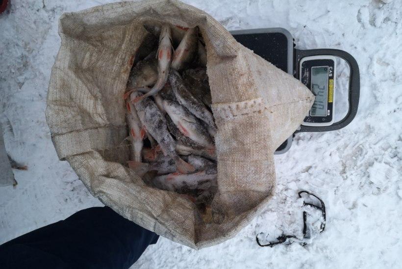 Kalapüügieeskirja on tehtud mitmed olulised muudatused