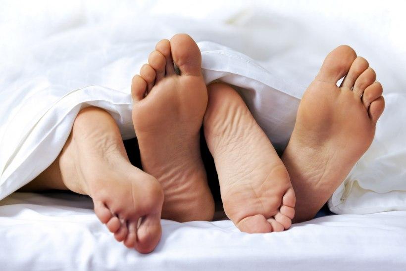 Tõnis Erilaiu lehesaba   Kuidas vanemad pojale voodiseltsilise palkasid