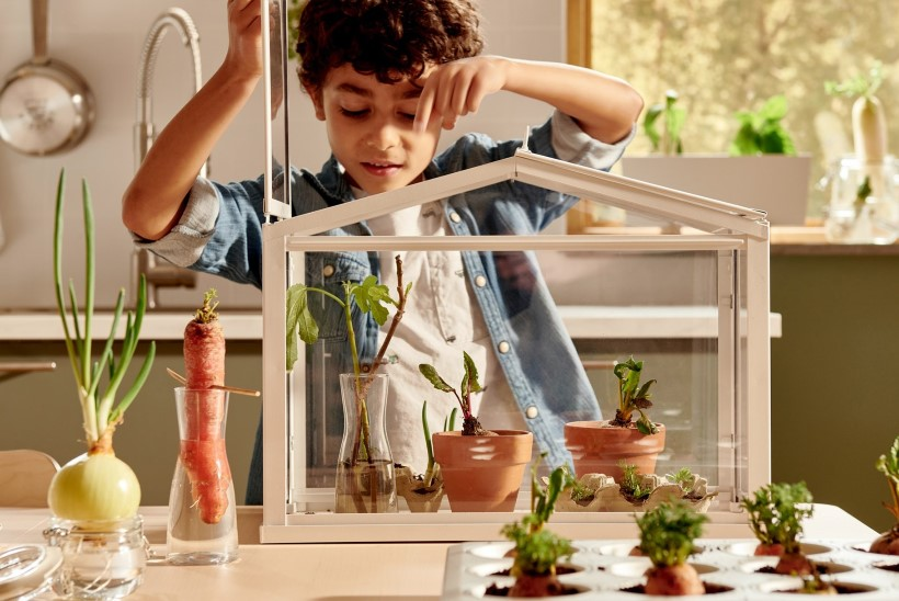 MÕNUS AIAKE KA TALVEL: 5 põnevat ideed, kuidas rõduta koju rohelust tuua