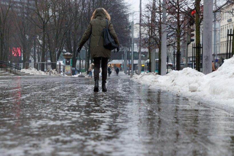 Joonas Laks | Talvine teehooldus saab olla inimsõbralik ja keskkonnasäästlik