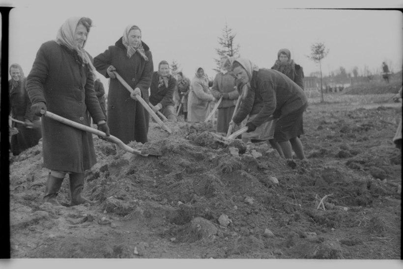 Mis juhtus aastal 1952? Kotkas tõi olümpiakulla, Kuressaarest sai Kingissepa