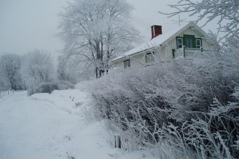 PANE TÄHELE: 4 ohtu, mida külm ilm kodu valvesüsteemidele põhjustada võib