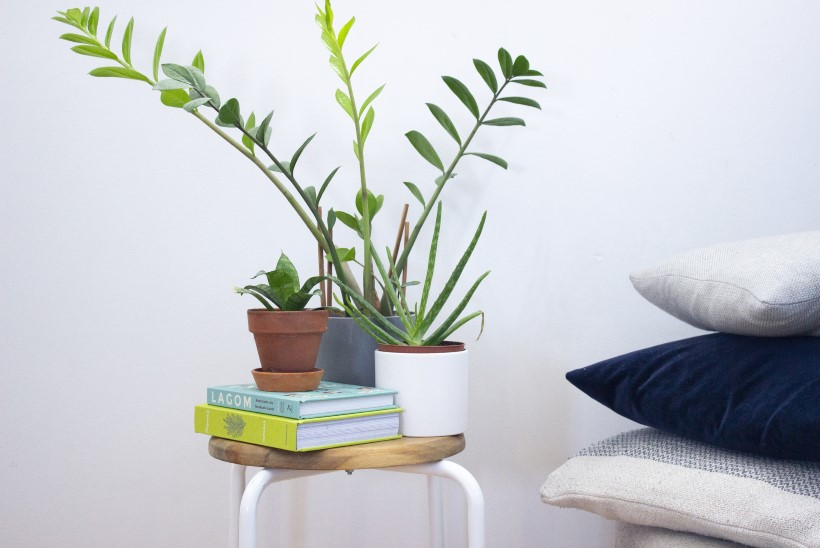 VANAST UUS: tuunitud taburetist saab nägus taimepostament