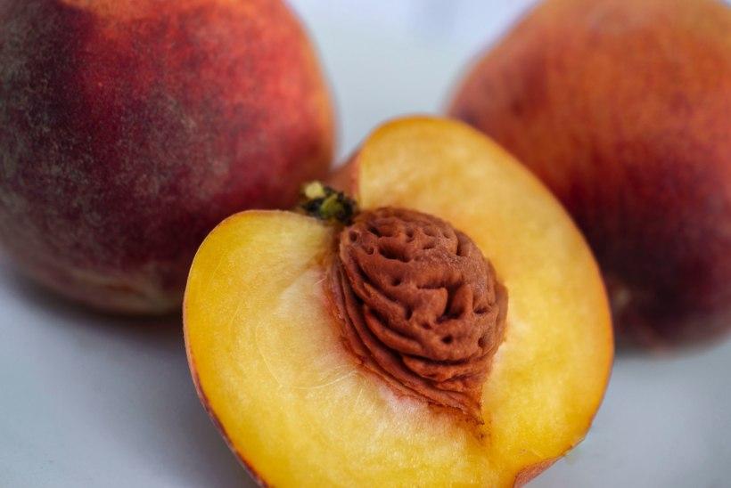 Lugeja küsib: kas poest ostetud viljade kivid ja seemned lähevad idanema?